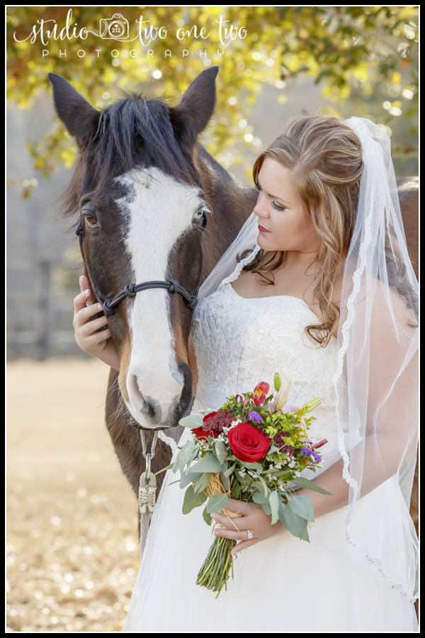 Brides with horses